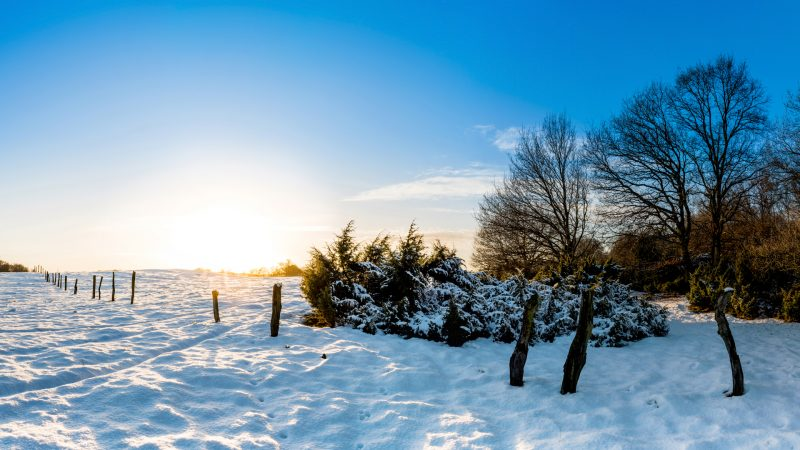 Tapete Winterlandschaft